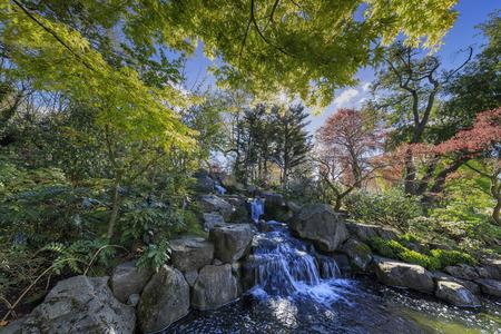 holland landscape: Beautiful landscape around Holland Park, London, United Kingdom