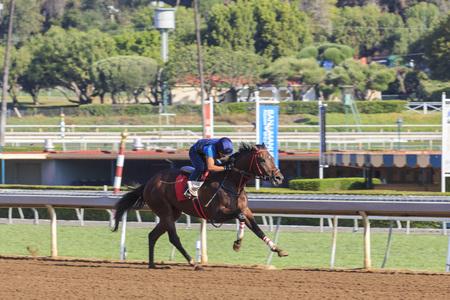 and arcadia: APR 8, Arcadia: Horse racing on APR 8, 2015 at Santa Anita Park