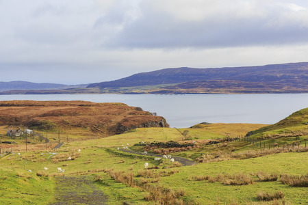 country side: Beautiful country side landscape around Boreraig