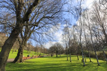 princes street: The Princes Street Gardens besides Edinburgh Castle