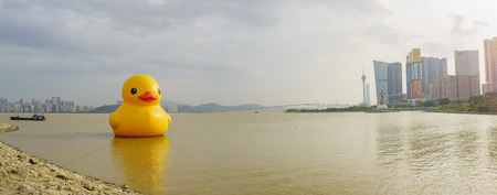 art show: The famous yellow duck art show in Macau around sunset time