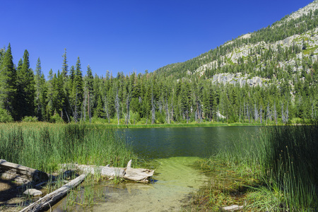 inyo national forest: The Sotcher Lake in Devils Postpile National Monument Stock Photo