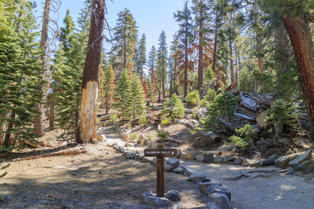 inyo national forest: Trail to the Rainbow Fall in Devils Postpile National Monument Stock Photo