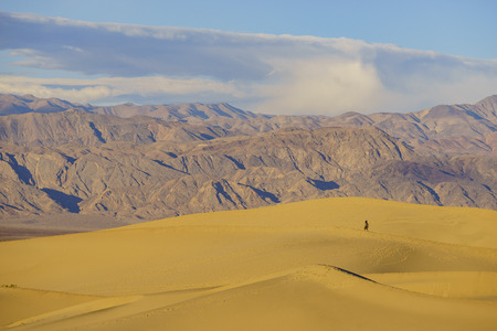 stovepipe: Woman hiking in the Mesquite Flat Dunes at Stovepipe Wells, Death Valley National Park