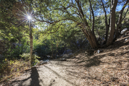 county side: Morning view of the beautiful Switzer Falls Trail, Los Angeles, California Stock Photo