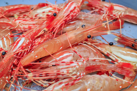 Fresh raw spot prawn selling at fish market at Newport Beach