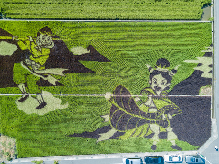 Aerial view of the beautiful Paddy field painting at Yuanli, Taiwan Stock fotó - 103010231
