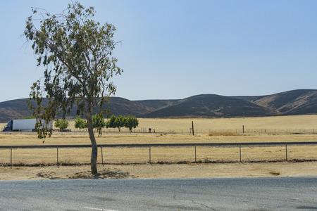 Terrible fir burned field near San Francisco, California
