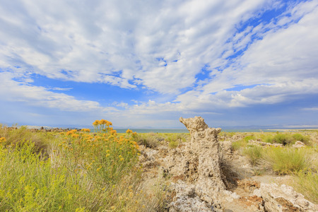 Speical scene - Tofu, Mono Lake with blue sky