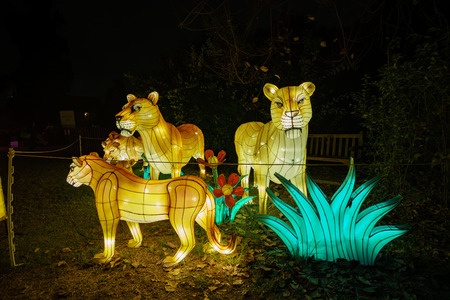 Los Angeles, NOV 21: Beautiful colorful lantern of Moonlight Forest Festival on NOV 21, 2018 at Los Angeles