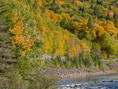 Beautiful fall color of Jacques-Cartier National Park at Quebec, Canada Фото со стока