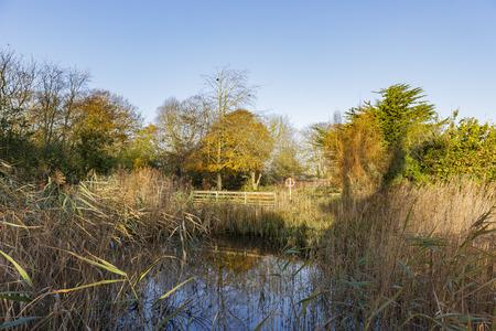 Traveling in the Hotham Park, Bognor Regis, United Kingdom around morning