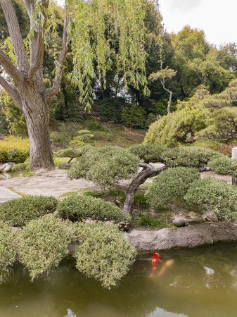 Beautiful Japanese Garden of Huntington Library at Los Angeles, California