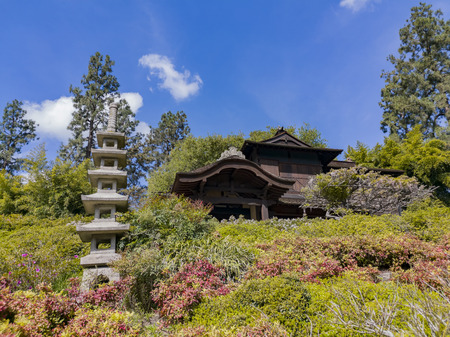 Los Angeles, APR 5: Beautiful Japanese Garden of Huntington Library on APR 5, 2019 at Los Angeles, California Editorial