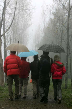 Many people walking with umbrella in a hazy day in Highland Experimental Farm.