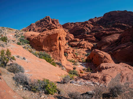 Sunny view of the Calico Hills of Red Rock Canyon National Conservation Area at Nevada Foto de archivo