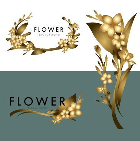 Plumeria Flower vector logo background