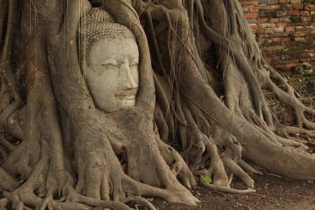 Wat Mahathat  of Thailand