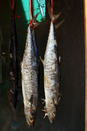 Salted Mackerel. photo
