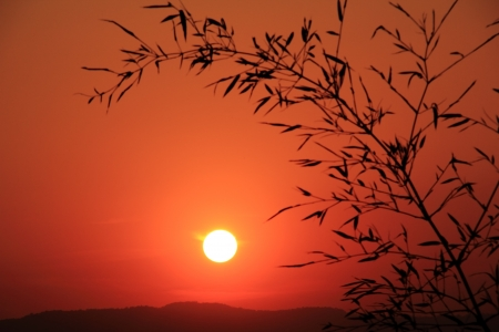 Sunset views  Nakhon Ratchasima, Thailand