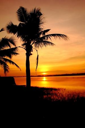 Sunrise at Nakhon Ratchasima,Thailand