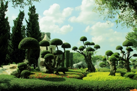 Ornamental garden  photo