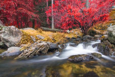 カンペーン・ペット、秋の森のクロン・ラン滝、 写真素材