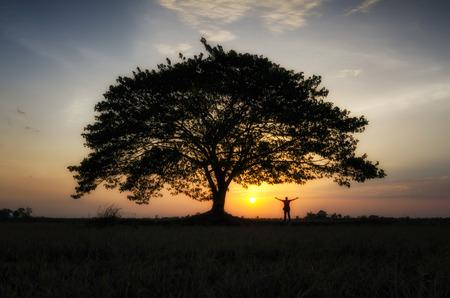 Man standing under a tree 스톡 콘텐츠