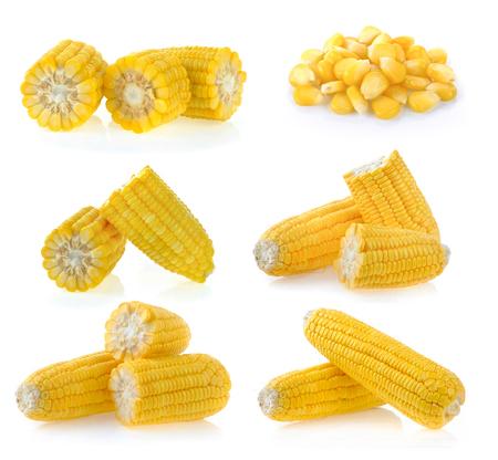 set of corn on white background Archivio Fotografico