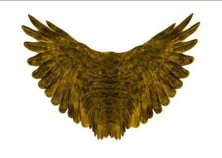 black wing on white background Archivio Fotografico