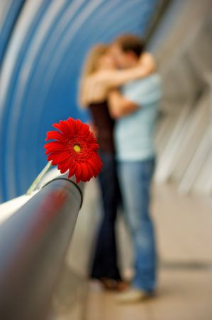 jill: Gerbera against the background of the kissing couple