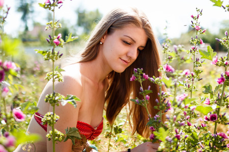 healthy llifestyle: young beautiful woman blond at mallows field Stock Photo