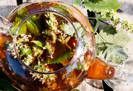 melissa: Blackcurrant and melissa herbal tea in teapot Stock Photo