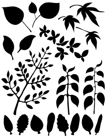 foliage  natural: Several different leaf design elements. Black on a white background.
