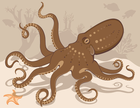 aquaria: Octopus swimming over a starfish with coral reef in background. Created in browns, beige and orange. Illustration