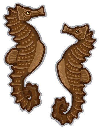mating: A pair of Seahorses with an isolated white background. Created in browns and beige color with a back and gray outline.