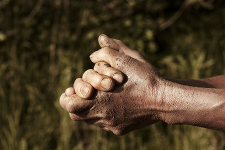 praise: hands of farmers farmer prays at farm  Stock Photo