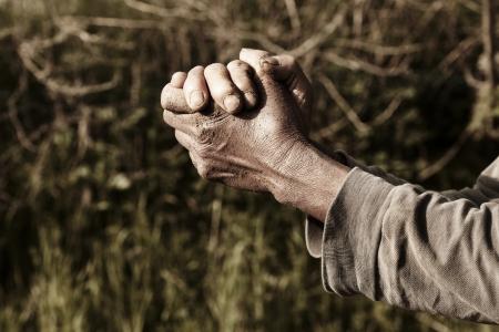 hands of farmers farmer prays at farm  Banco de Imagens