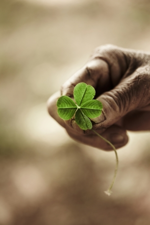 four objects: Hand holding a four leaf clover