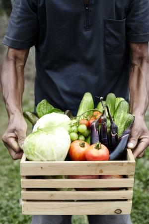 wooden box: Wooden box filled fresh vegetables