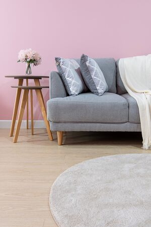 Livingroom interior with grey velvet sofa on pink wall background
