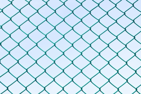 chain fence: Green wire mesh