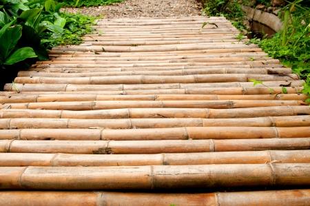 Bamboo path Stock Photo - 17065994