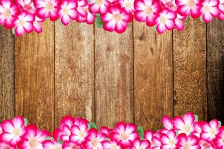 flowers frame border Stock Photo - 17067282