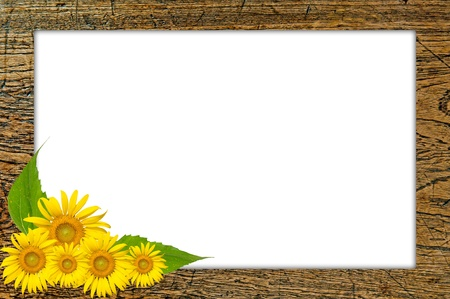 Wooden picture with sun flower blooming Stock Photo - 17066609
