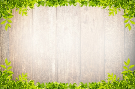 leaves frame on wooden background photo