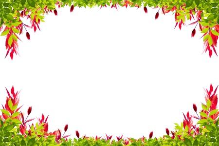 bladeren frame geïsoleerd op witte achtergrond Stockfoto