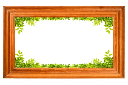 Wooden frame with green leaves photo