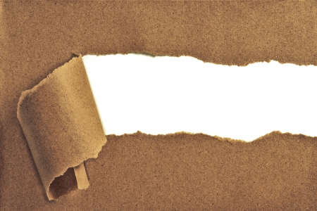Torn Paper with space for text showing a white background photo