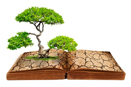 The big tree growth from a book with cracked ground texture, Global warming concept